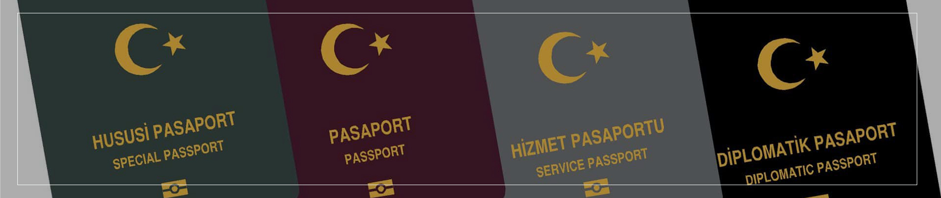 Turkish Passport Types